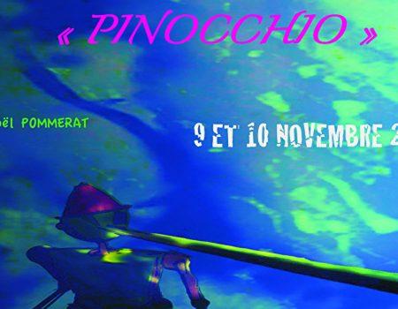PINOCC flyer.large